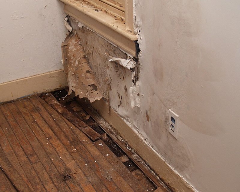 water damage foundation