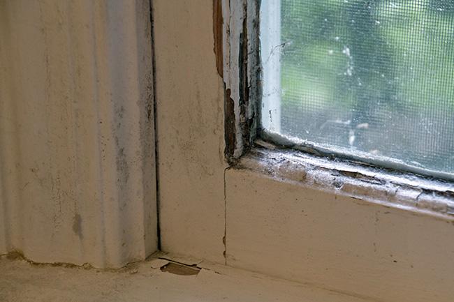 warped windows
